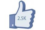 2500 Fanpage Fans (Likes)