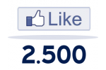 2500 Facebook Likes For Website / Blog
