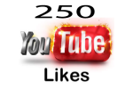 250 YouTube Video Likes