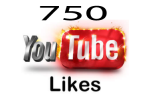750 YouTube Video Likes